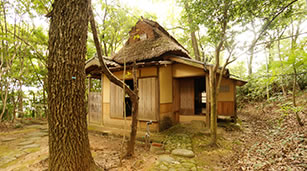 SHOKINTEI (Tea Room)