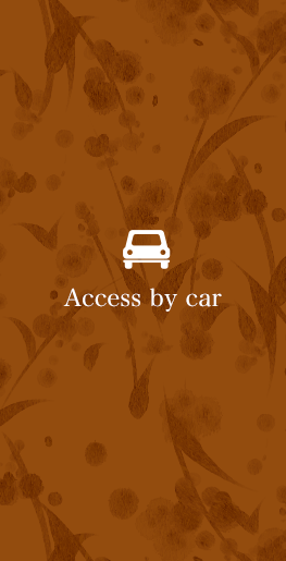 Access by car