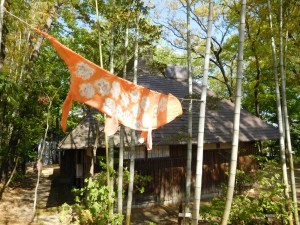 田舎家と鯉のぼり