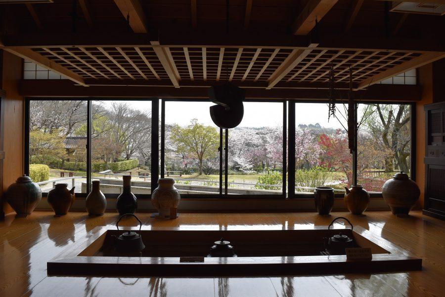 民芸館周辺の桜が見頃を迎えています