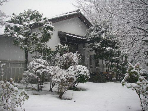 winter-img6