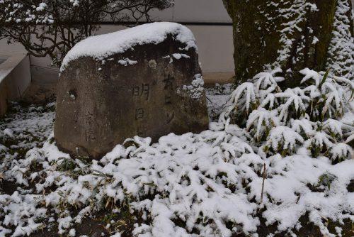 winter-img7