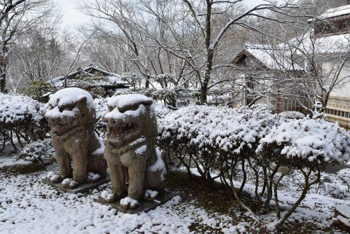 winter-img8